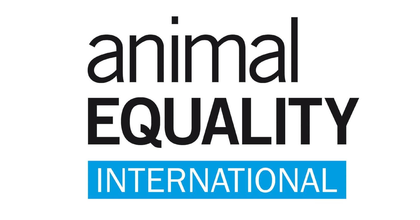 02-animal-equality